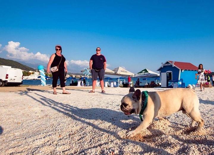 Plaže za pse 17